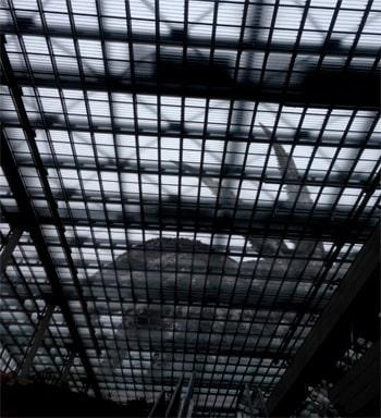 収容室から脱走したSCP-120-JP-1。監視カメラの映像から。